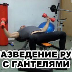 Разведение рук с гантелями на горизонтальной скамье – техника выполнения упражнения!
