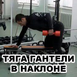 Тяга гантели одной рукой в наклоне к поясу: техника выполнения тяг гантелей в наклоне
