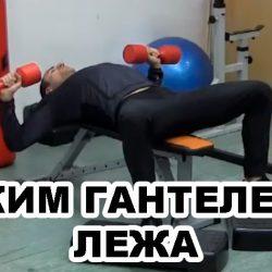 Жим гантелей лежа на горизонтальной скамье – техника выполнения упражнения!